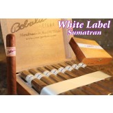 Dominican Natural - White Label - Sumatran - Mild Cigars