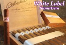Dominican Natural Robusto 50 x 5 Box of 25